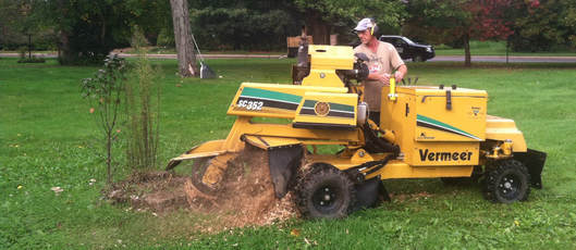 Stump grinding using Vemeer 3500